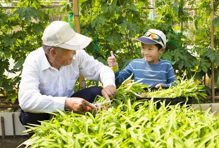 grandfather and grandson working in the vegetable garden