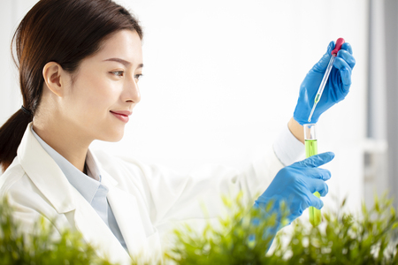young woman plants scientist watching test tube Stock Photo