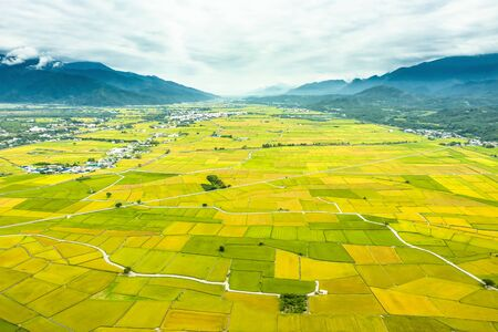 Aerial view of Beautiful Rice Fields in taitung . Taiwan. Фото со стока