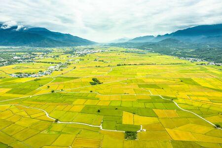 Widok z lotu ptaka piękne pola ryżowe w taitung. Tajwan.