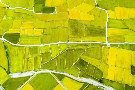 Vista aérea de hermosos campos de arroz en taitung. Taiwán. Foto de archivo