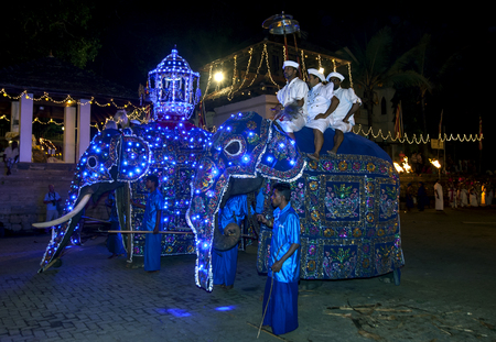 kandy: Ceremonial elephants prepare to parade through the streets of Kandy during the Esala Perahara in Kandy, Sri Lanka. Editorial