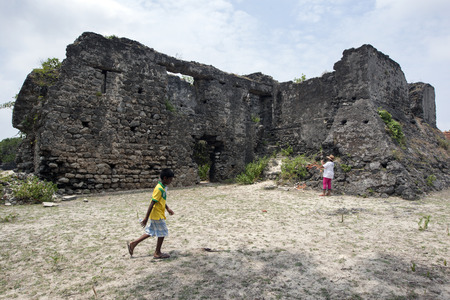 delft: The ruins of the Dutch Fort on Delft Island in the Jaffna region of northern Sri Lanka. Editorial