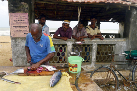 fishmonger: A fishmonger cutting up fish at Negombo, Sri Lanka.