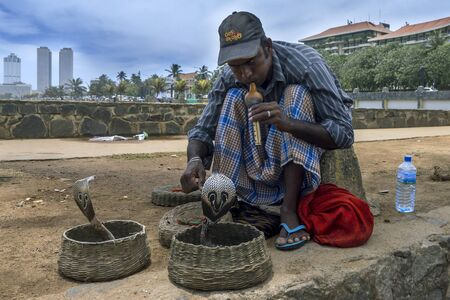 charmer: A snake charmer keeps his eyes on his pair of cobras next to Galle Face Green in Colombo, Sri Lanka.