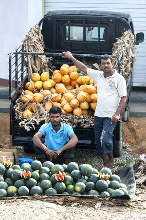 southern sri lanka: Melon sellers on the roadside near Mirissa in southern Sri Lanka.