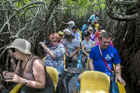referidos: Tourists pass through a section of mangrove trees often referred to by locals as mangrove caves on the Madu River near Balapitiya in Sri Lanka.