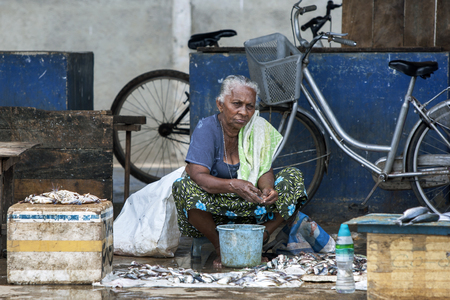 fish selling: A lady selling fish and crabs at the Negombo Fish Market in Negombo, Sri Lanka.