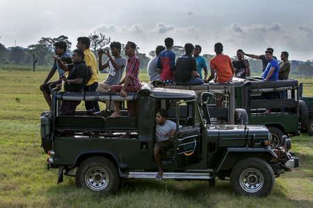 gal: Tourists aboard jeeps in the Kaudulla National Park at Gal Oya Junction in central Sri Lanka.