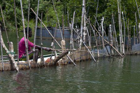 man fishing: A man fishing for shrimp next to a barrier on the Madu River at Balapitiya in Sri Lanka. Editorial