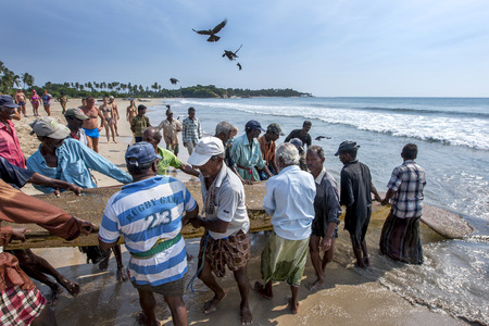 hauling: After two hours of hauling in their drag nets from off Uppuveli beach the fishermen have little to show for all their hard work.East coast of Sri Lanka.