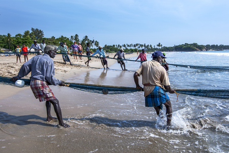 Fishermen hauling in their drag nets from off Uppuveli beach. After hours of hard work they had little to show for all their efforts. East coast of Sri Lanka.