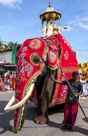 ceremonial: A ceremonial elephant walks along the road during the Hikkaduwa Perahara in Sri Lanka. Editorial