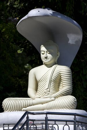 buddha sri lanka: A sitting Buddha statue with a cobra umbrella located on a hill above Kandy in Sri Lanka. Stock Photo