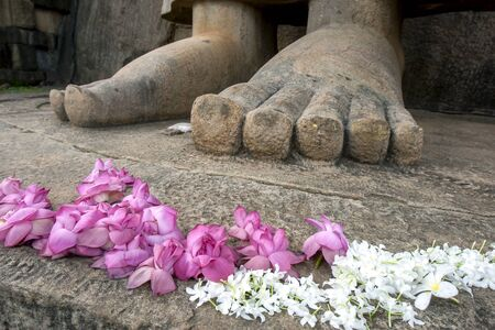 aukana buddha: The feet of the Aukana Buddha statue, considered to be one of the finest carved rock statues in Asia. The Aukana Buddha statue located at Aukana Raja Maha Viharaya in Sri Lanka