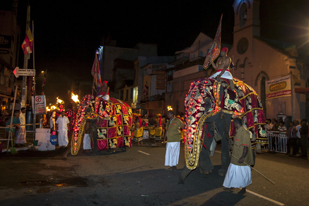 ceremonial: Ceremonial elephants parade through the streets of Kandy during the Esala Perahera in Sri Lanka. The Esala Perahera is held to honour the Sacred Tooth Relic of Lord Buddha which is enshrined within the Temple of the Sacred Tooth Relic and is considered on