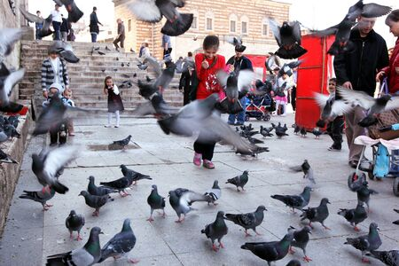 eminonu: Children play among the pigeons next to Yeni Camii New Mosque at Eminonu in Istanbul, Turkey.