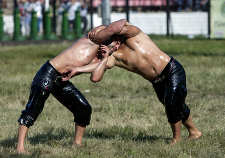 edirne: A battle between two wrestlers at the Kirkpinar Turkish Oil Wrestling Festival, Edirne, Turkey, 2013.