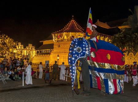 ceremonial: A beautifully dressed ceremonial elephant parades past the Temple of the Sacred Tooth Relic in Kandy in Sri Lanka. The Esala Perahera is held to honour the Sacred Tooth Relic of Lord Buddha which is enshrined within the Temple of the Sacred Tooth Relic an