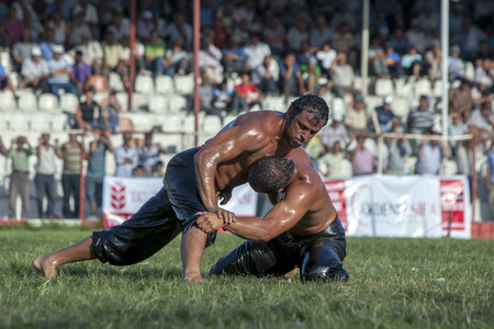 heavy weight: Heavy weight wrestlers competing at the Elmali Turkish Oil Wrestling Festival in Elmali, Turkey.