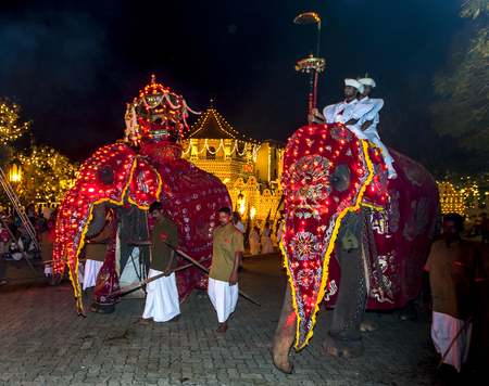ceremonial: Ceremonial elephants pass the Temple of the Sacred Tooth Relic in Kandy, Sri Lanka during the Esala Perahera. The Esala Perahera festival runs every year in late July or early August for ten days, ending on the Nikini poya full moon and is held to honour  Editorial