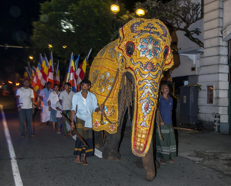 followers: A ceremonial elephant parades ahead of Buddhist followers down the streets of Kandy at 4 am on a November morning. This was an unusual event as the August perahera is the time of the year when people flock to Kandy to witness parading elephants.