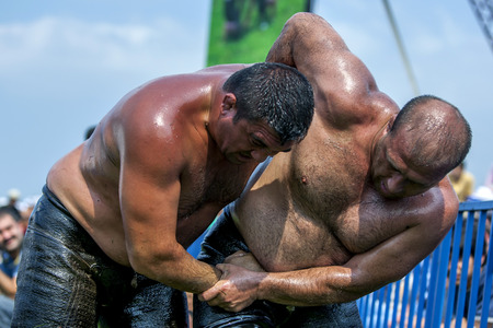 heavy weight: Heavy weight wrestlers battle to avoid being eliminated from competition at the Izmit Turkish Oil Wrestling Festival in Turkey.
