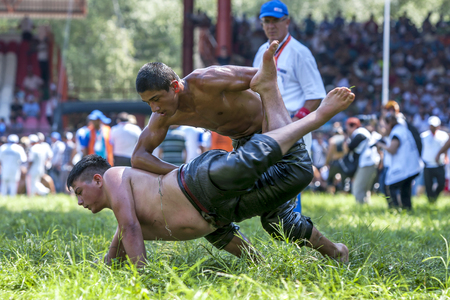 edirne: A middle weight wrestler takes control of his battle during competition at the Kirkpinar Turkish Oil Wrestling Festival in Edirne in Turkey.