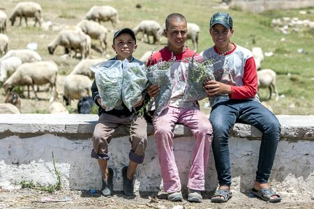 atlas: Boys selling wild mint on the roadside in the Mid Atlas Mountains, Morocco. Editorial
