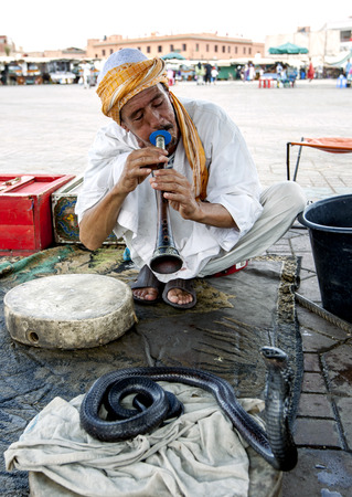 charmer: A snake charmer plays his flute towards a cobra in Djemaa el-Fna, the main square in the Marrakesh medina in Morocco.