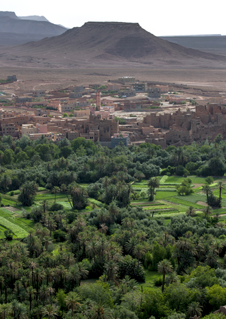 mountain oasis: A section of the lush Tinerhir oasis in Morocco. Tinerhir is a city in the region of Draa-Tafilalet, south of the High Atlas and north of the Little Atlas Mountains in south eastern Morocco. Stock Photo