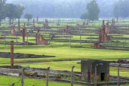 oswiecim: A section of the Auschwitz-Birkenau Concentration Camp barracks in Poland showing the brick chimneys of the prisoner barracks. Auschwitz-Birkenau State Museum is located near Oswiecim in Poland.