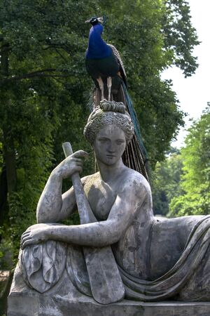 lazienki: A peacock sits on a statue in Lazienki Park in Warsaw in Poland. Stock Photo