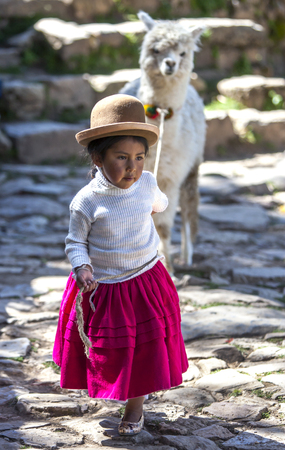 bowler hat: A young girl wearing a Bolivian bowler hat leads her llama along a path on Sun Island in Lake Titicaca in Bolivia.