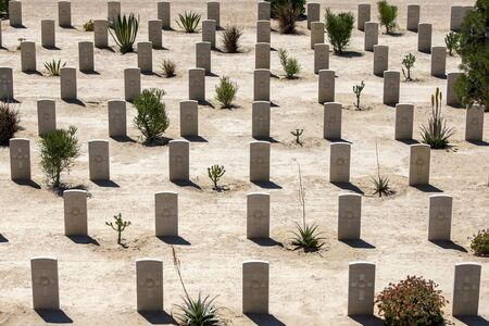 commonwealth: Commonwealth war graves at the El Alamein War Cemetery at Alamein in Egypt.