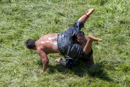 wrestlers: Wrestlers battle on the turf of the Kirkpinar arena during competition at the Kirkpinar Turkish Oil Wrestling Festival in Edirne in Turkey. Kirkpinar is the most famous oil wrestling tournament in Turkey. Editorial
