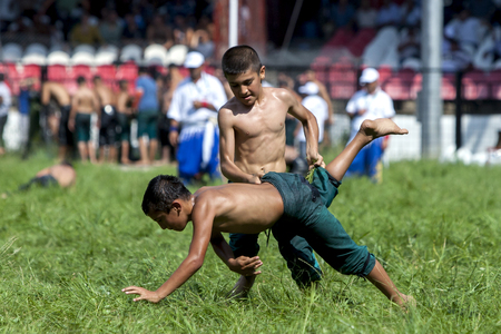 edirne: A young wrestler overpowers his opponent at the Kirkpinar Turkish Oil Wrestling Festival in Edirne in Turkey. Kirkpinar is the most famous oil wrestling tournament in Turkey. Editorial