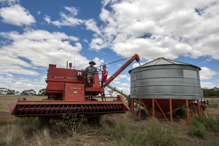 A farmer empties grain from his harvester into a field silo on his property at Kringin in South Australia in Australia.