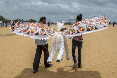 hundreds: A flying horse prepares for take off from Negombo beach in Sri Lanka. The kite was one of hundreds which took to the sky during the annual kite festival.