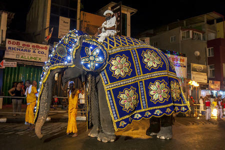 kandy: Mounted on his tusker elephant the Front Runner or Peramununerala carries a casket containing the religious activities of the Sacred Tooth Relic procession. The great procession or Esala Perahera takes place in Kandy, Sri Lanka. Editorial