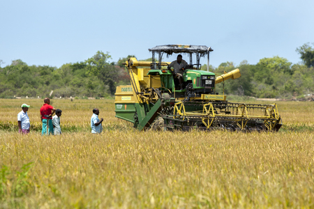 A group of farmers watch as a mechanical harvester is moved into position to begin reaping a field of rice near Panama in eastern Sri Lanka.