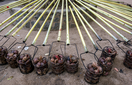 Steel baskets filled with coconut shells and carried on poles ready to be set alight to become torches during the Buddhist Esala Perahera (great procession) at Kandy in Sri Lanka.