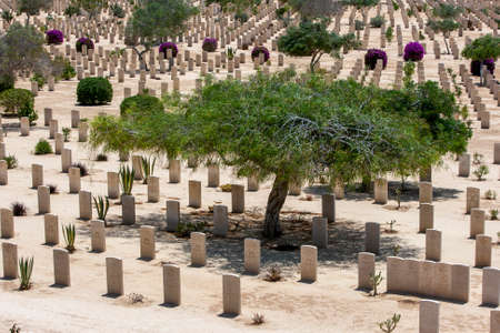 Commonwealth war graves at El Alamein War Cemetery in northern Egypt. The cemetery contains the graves of British Empire soldiers who died during World War Two.