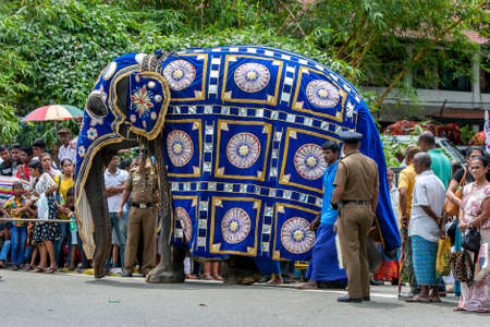 A ceremonial elephant dressed in a blue cloak walks past a crowd of people before the start of the Day Perahera, the final parade of the Buddhist Esala Perahera festival at Kandy in Sri Lanka.
