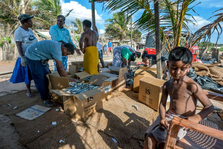 A fishing family pack dried sardine fish into cardboard boxes on Negombo beach in Sri Lanka prior to sale.