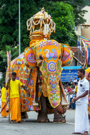 A ceremonial elephant parades along a road in Kandy during the Day Perahera, the final event of the Buddhist Esala Perahera (great procession).