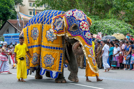 A ceremonial elephant is lead by mahouts along a street of Kandy in Sri Lanka during the Day Perahera, the final event of the Buddhist Esala Perahera (great procession). Editorial