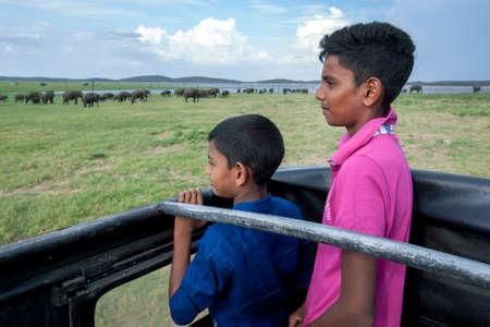 Sri Lankan boys standing in a safari jeep admire a large herd of wild elephants grazing adjacent to the tank (reservoir) at Kaudulla National Park in Sri Lanka.