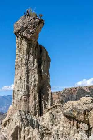 An incredible natural clay spire formation with plants growing at its peak at Moon Valley (Valle de la Luna) in La Paz in Bolivia. Erosion has worn away the mostly clay mountain forming a series of tall spires.
