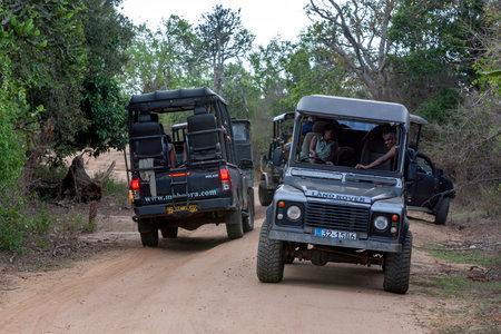 Safari jeeps driving along a dirt road looking for wildlife within Yala National Park at Tissamaharama in southern Sri Lanka.